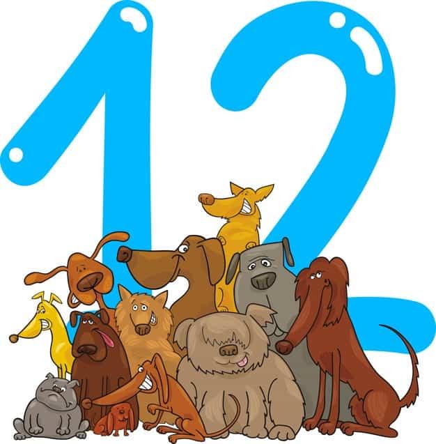 12 Harfli Hayvanlar
