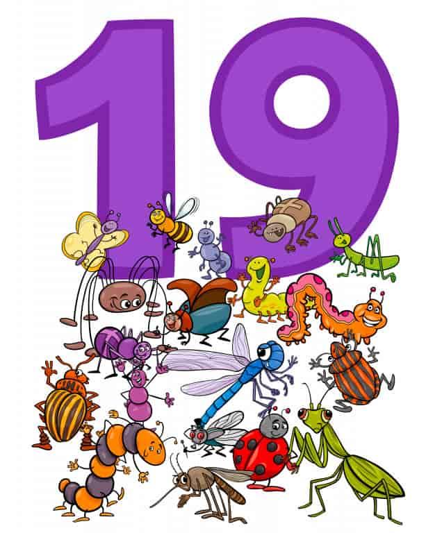 19 Harfli Hayvanlar