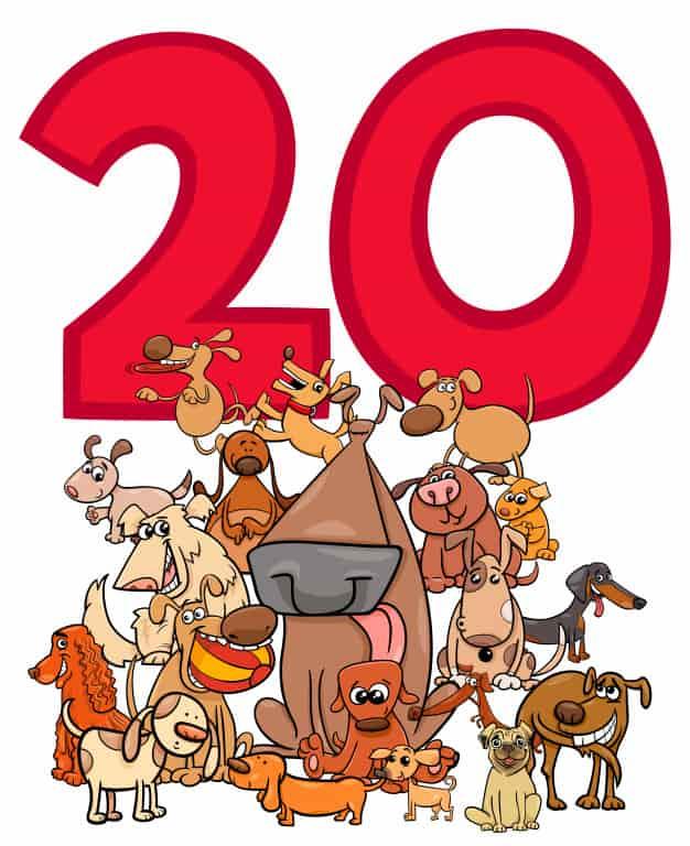 20 Harfli Hayvanlar