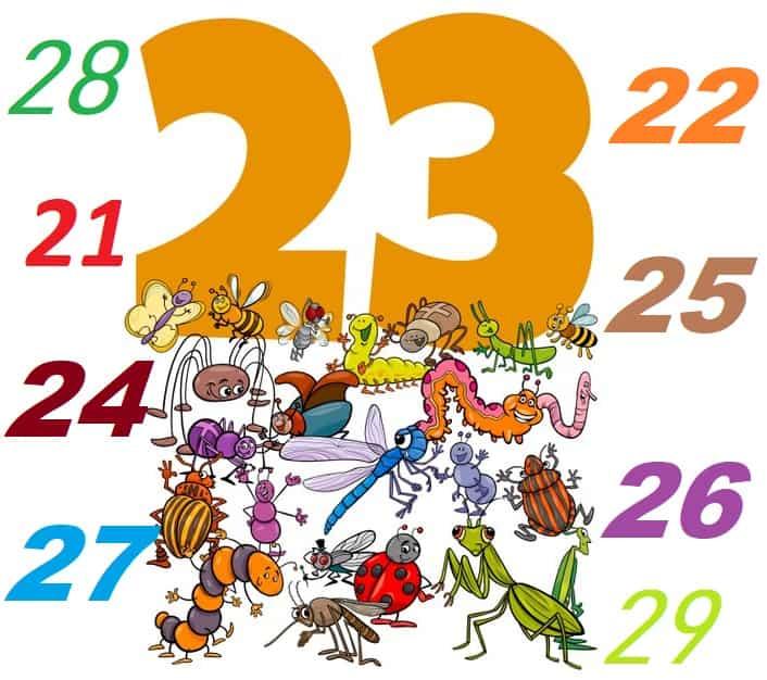21 Harfli ve Üzeri Hayvanlar