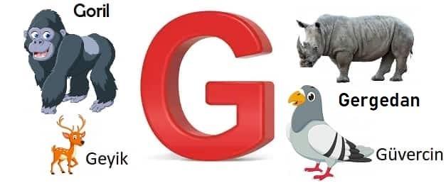 G ile başlayan hayvanlar