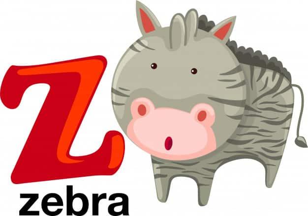 Z Harfi ile Başlayan İngilizce Hayvanlar